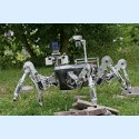 Image - Nature-Inspired Robotics Powered by DC Micro-motors