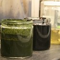 Image - Algae to crude oil: Million-year natural process takes minutes in the lab