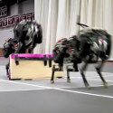 Image - MIT cheetah robot clears hurdles at 5 mph