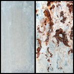 Image - New type of corrosion protection for galvanized steel is self-healing