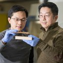 Image - Super wood is stronger than most metals