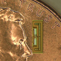 Image - New ant-size radios may be key to connecting Internet of Things