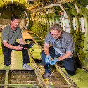 Image - Wings: <br>Structural health monitoring takes a step forward with in-flight sensor tests