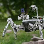Image - Robotics inspired by nature: <br>Coreless DC motor applications
