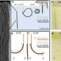 Image - Nano-sized 'muscle' lifts 165x its own weight