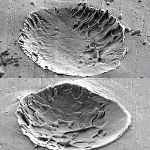 Image - Researchers delve into how to get sprayed metal coatings to stick